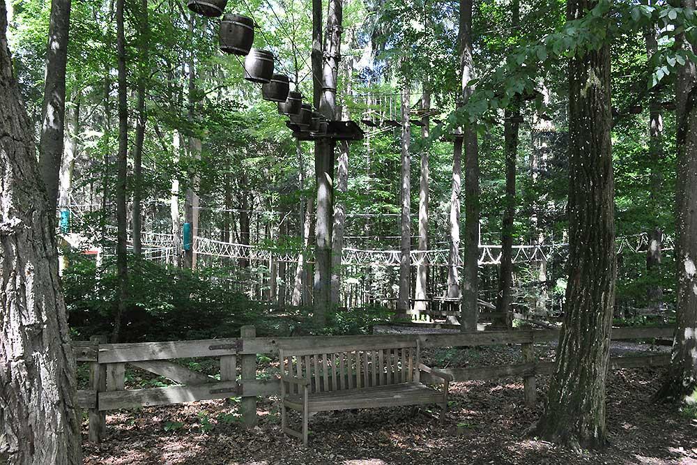 Für Abenteurer wird Action im Waldkletterpark geboten.